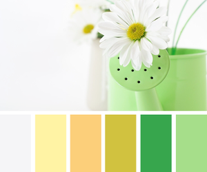green, yellow, and design seeds image