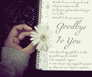 goodbye, Letter, and love image