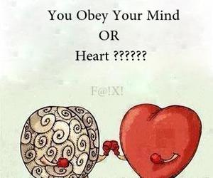 brain, heart, and mind image