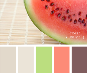 color, design, and designseeds image