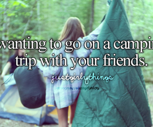 camping and friends image