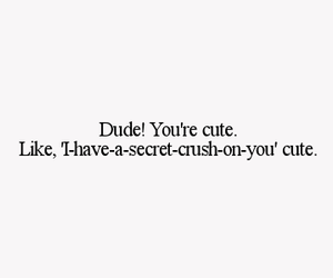 cute, crush, and text image