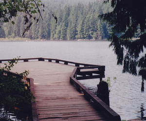 landscape, forest, and lake image