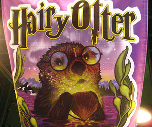 hairy, harry potter, and monterey image