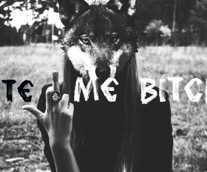 bitch, wolf, and bite image