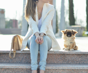 fashion, dog, and outfit image