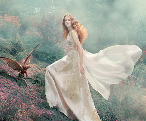 photography, dress, and forest image