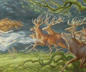 animal and tree image