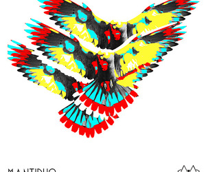 art, design, and feathers image