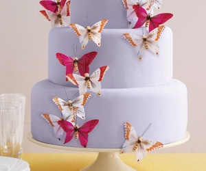 butterfly cake image