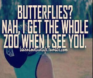 boy, butterflies, and zoo image