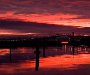 auckland, red, and platinumphoto image