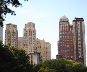 buildings, city, and park image