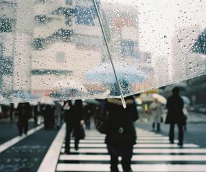 rain, umbrella, and street image