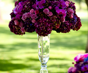centerpieces, decorations, and floral arrangement image