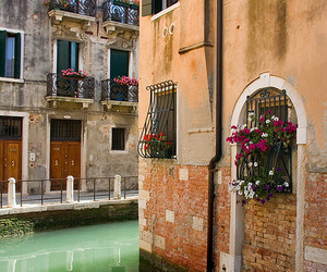 venice, flowers, and street image