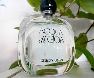 Giorgio Armani, girly, and perfume image