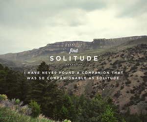companion, quote, and solitude image