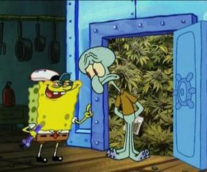 spongebob, funny, and weed image