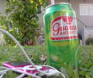 guaraná image