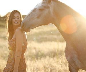 horses and ritapereira image