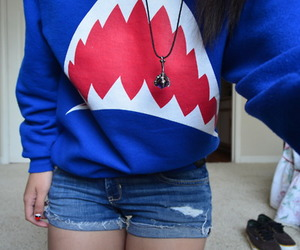 shark, sweater, and blue image