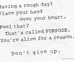 quote, heart, and purpose image