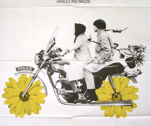 black & white, harold and maude, and poster image