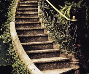 beautiful, garden, and steps image