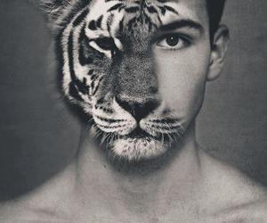 tiger, boy, and man image