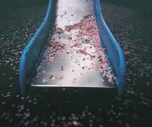 flowers, slide, and vintage image