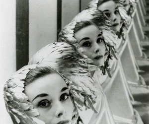 audrey hepburn and feathers image