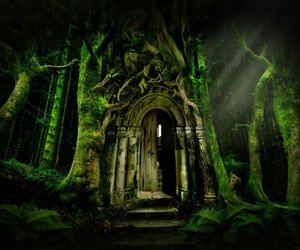 fantasy, forest, and door image