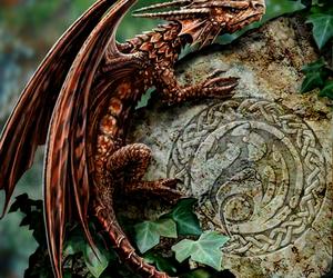 dragon, celtic, and fantasy image