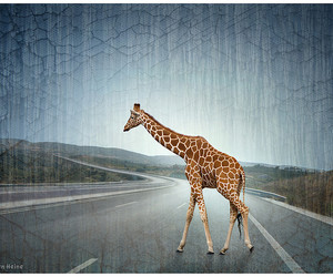 art, countryside, and Girafe image