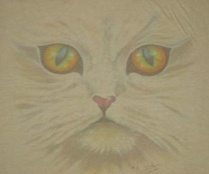 cat, Crystal Castles, and cats eyes image