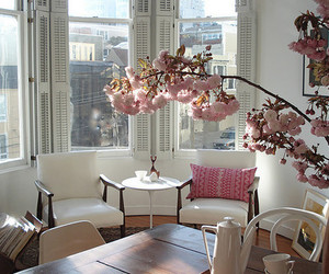 flowers, room, and pink image