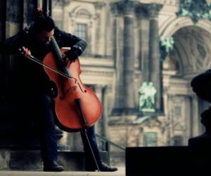 berlin and cello image