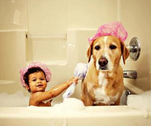 dog, baby, and shower image