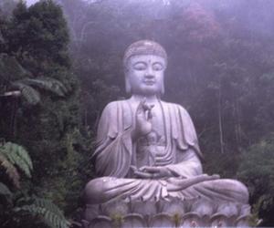 pale, Buddha, and grunge image