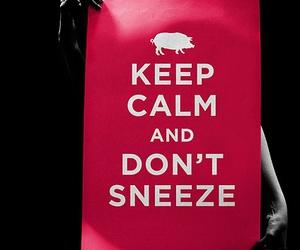 poster, flu, and swine image