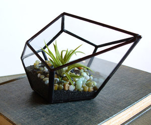 green, plant, and jechoryglassdesigns image