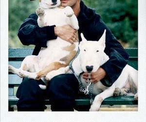 marc jacobs, out magazine, and marc jacobs dogs image