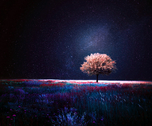 tree, night, and art image