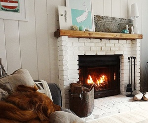 dog, fire, and fireplace image