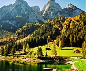 austria, autumn, and film image