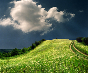 cielo, fields, and grass image