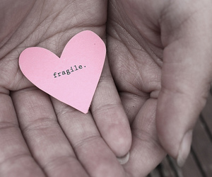 fragile, heart, and hands image