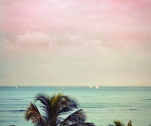 beach, beautiful, and Beverly Hills image