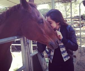 lauren jauregui, horse, and lauren image